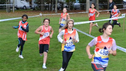 Les jeunes du SEC performants au cross de Fontenay-le-Comte !